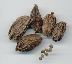 Amomum subulatum: Nepalese black (brown) cardamom