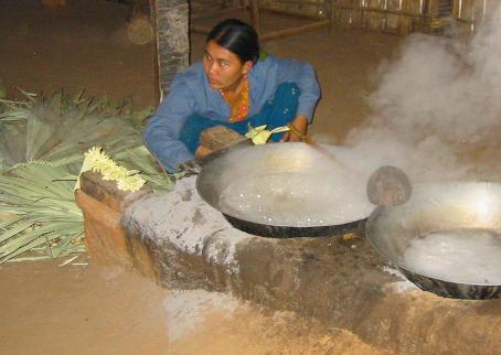 Cocos Nucifera: Jaggery production