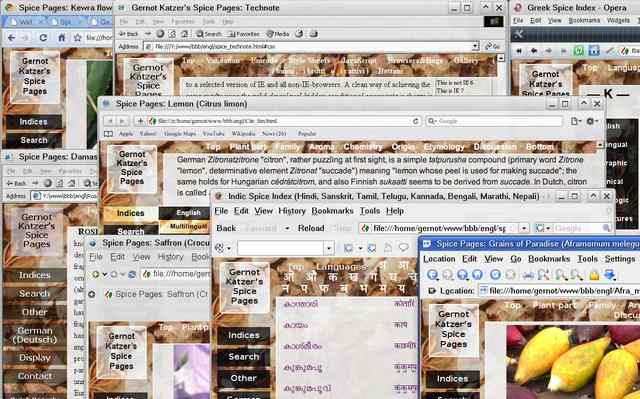 Screenshot showing different browser windows